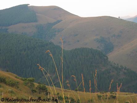 """Rückfahrt nach Hazyview durch die """"Highlands"""""""