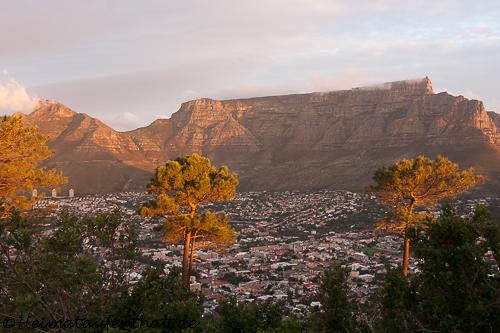 Der Tafelberg tront über der Stadt