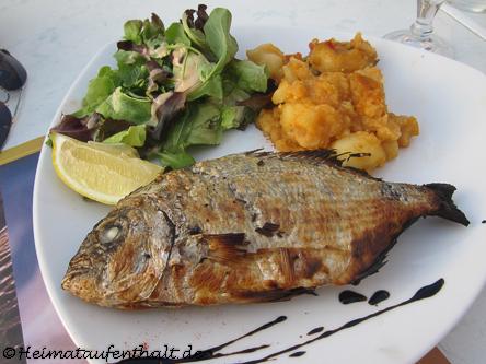 """Ein leckerer Fisch im Restaurant """"Chez Jeannot"""" in dem kleinen Hafen"""