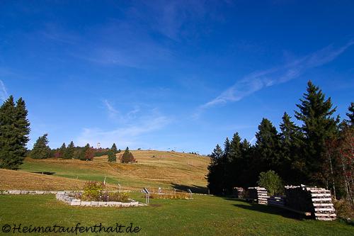 Von hier aus geht es den Seebuck hinauf, der im Winter zum bekanntesten Skigebiet des Schwarzwaldes wird
