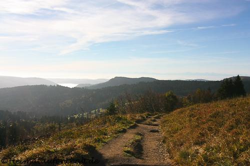 Mit jedem zurückgelegten Höhenmeter hat man einen tollen Blick in die Täler des Hochschwarzwaldes