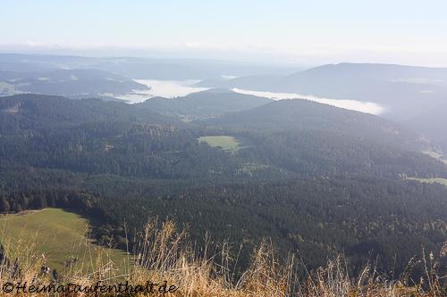 Oben angekommen blickt man über den Hochschwarzwald, wo am Morgen noch der Nebel in den Tälern liegt