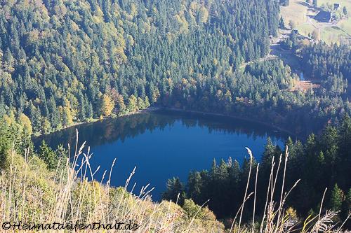 Blick auf den Feldsee, der am Ende des Feldberg-Steigs auf uns wartet
