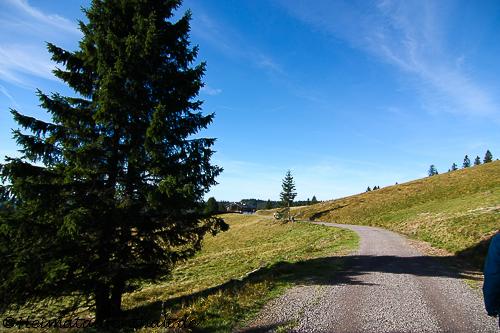 Der Wanderweg zur Todtnauer Hütte