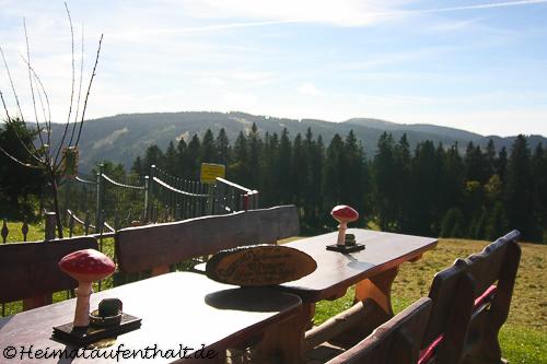 Die Sonnenterrasse der Todtnauer Hütte bietet einen tollen Ausblick