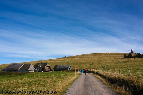 Die nächste Hütte und damit der dritte Stop der Hüttentour ist in Sicht: Die St. Wilhelmer Hütte, direkt unterhalb des Feldberges
