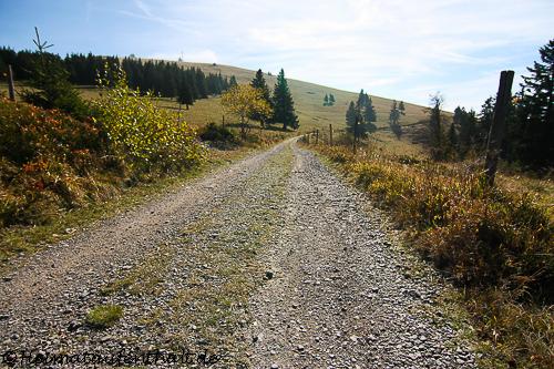 ...während wir den eher gemütlichen Waldwanderweg zur Zastler Hütte antraten