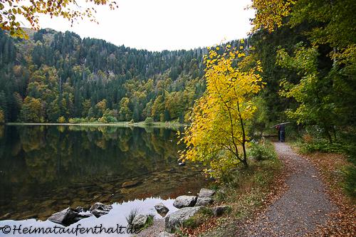 Der kleine Feldsee, ein Ort der Ruhe inmitten der Natur