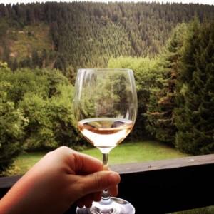 Entspannen auf der schönen Terrasse mit Blick auf die grünen Tannenwälder