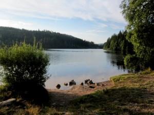 Ganz früh am Morgen die Ruhe an dem kleinen See genießen